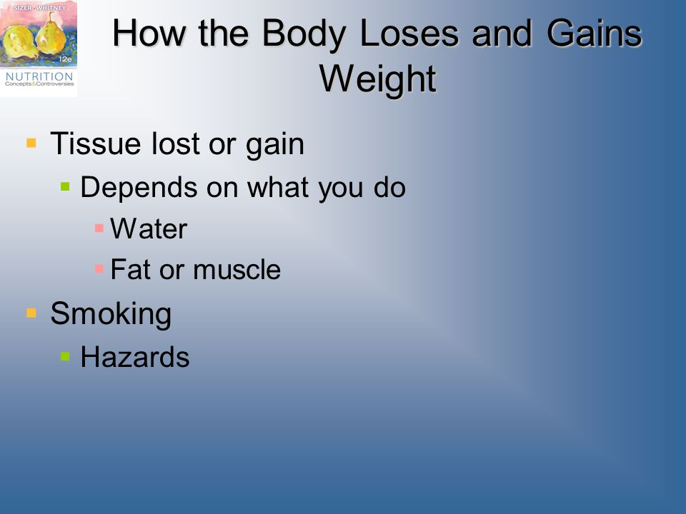 How the Body Loses and Gains Weight