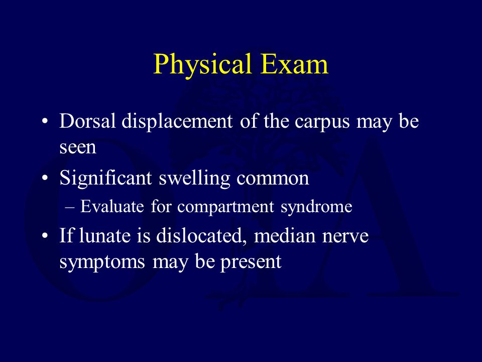 Physical Exam Dorsal displacement of the carpus may be seen