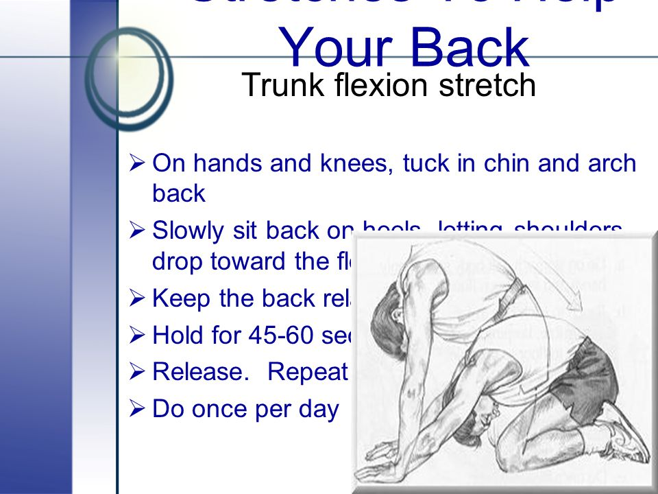 Stretches To Help Your Back
