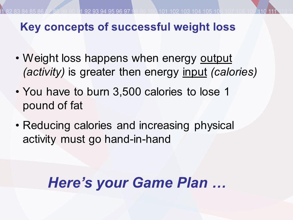 Key concepts of successful weight loss