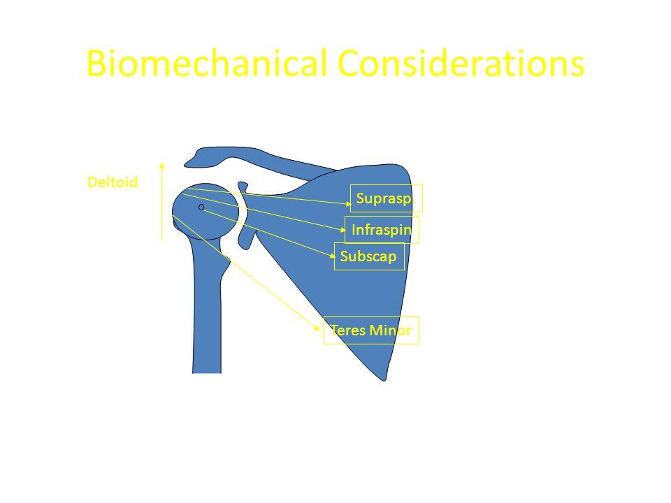 Biomechanical Considerations