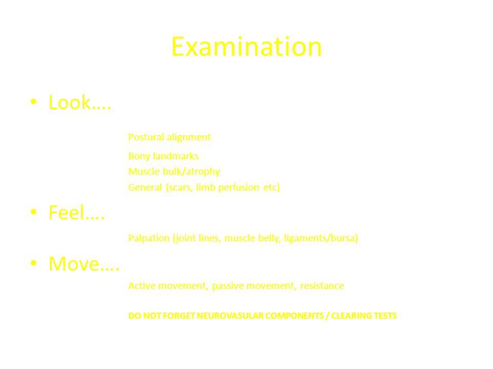 Examination Look…. Postural alignment Feel…. Move…. Bony landmarks