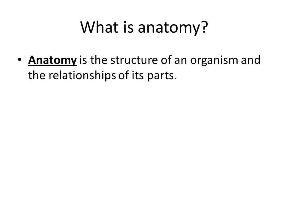 What is anatomy Anatomy is the structure of an organism and the relationships of its parts.