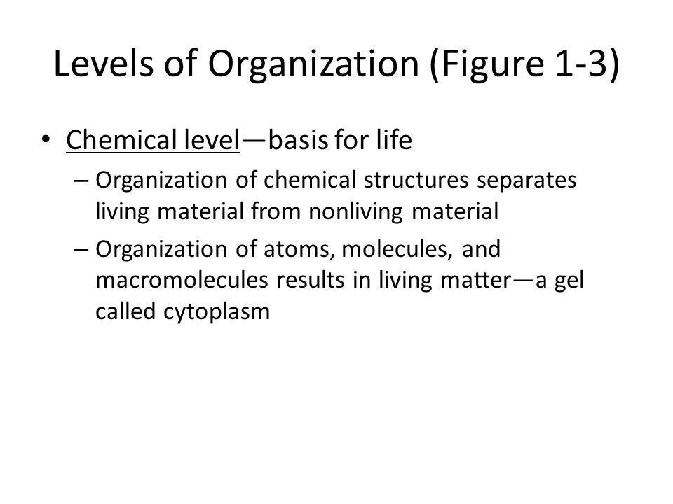 Levels of Organization (Figure 1-3)