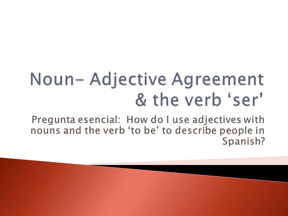Noun- Adjective Agreement & the verb 'ser'