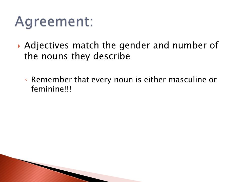 Agreement: Adjectives match the gender and number of the nouns they describe.