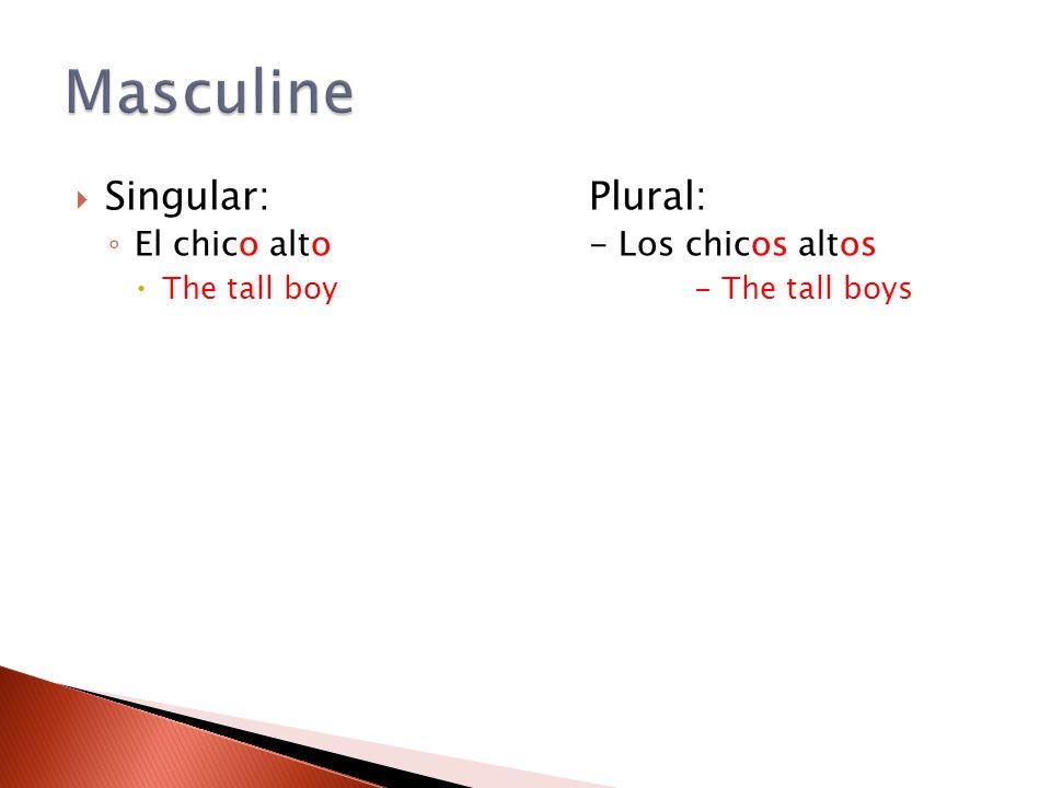 Masculine Singular: Plural: El chico alto - Los chicos altos