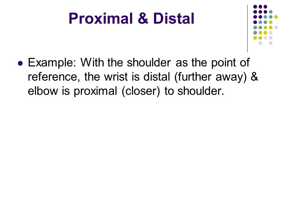 Proximal & Distal Example: With the shoulder as the point of reference, the wrist is distal (further away) & elbow is proximal (closer) to shoulder.