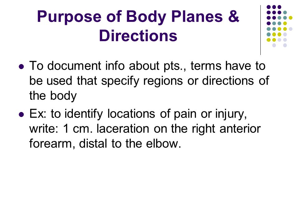 Purpose of Body Planes & Directions