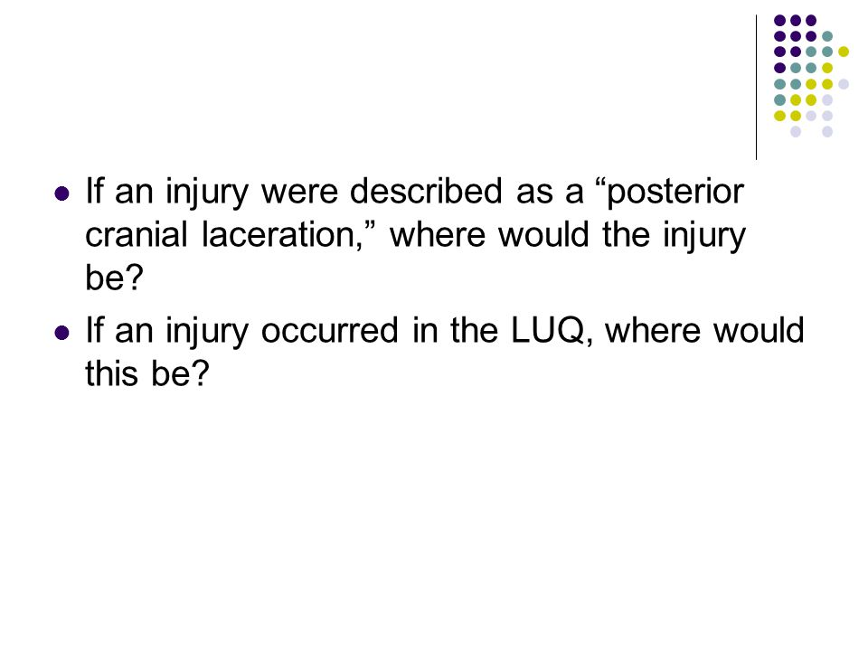 If an injury were described as a posterior cranial laceration, where would the injury be