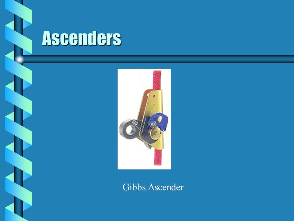 Ascenders Gibbs Ascender