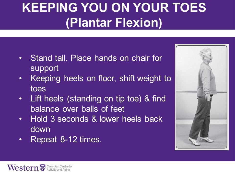 Keeping you on Your Toes (Plantar Flexion)