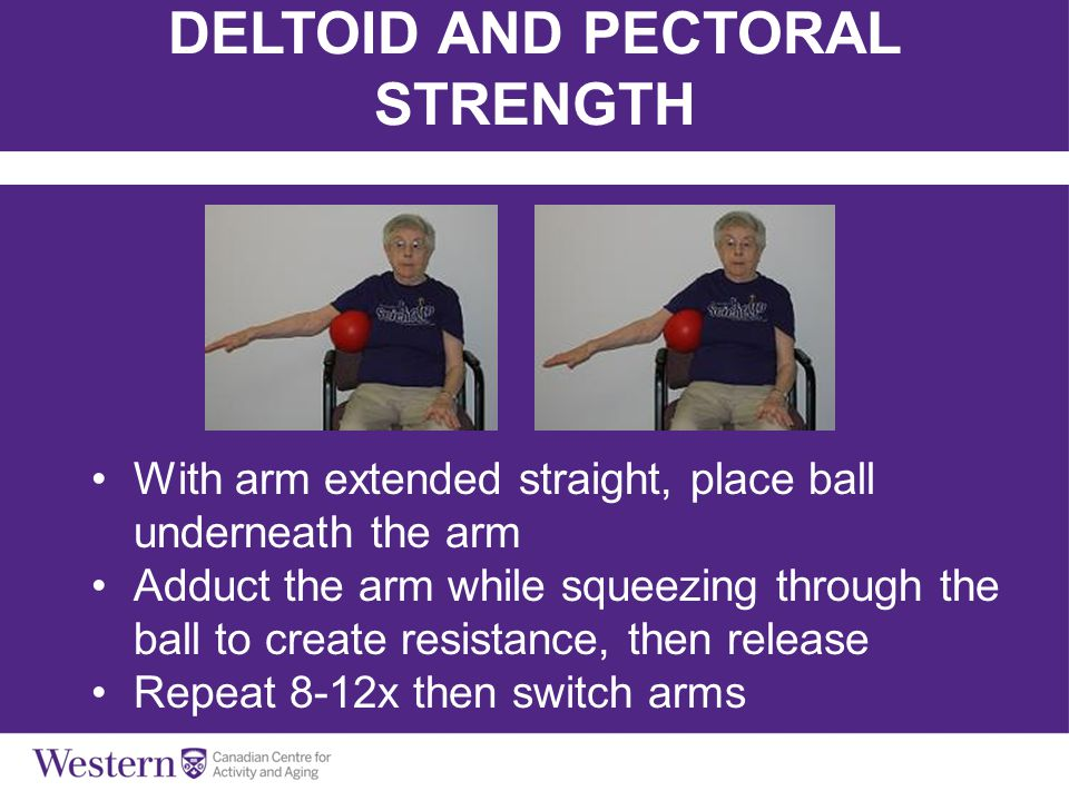 DELTOID AND PECTORAL STRENGTH