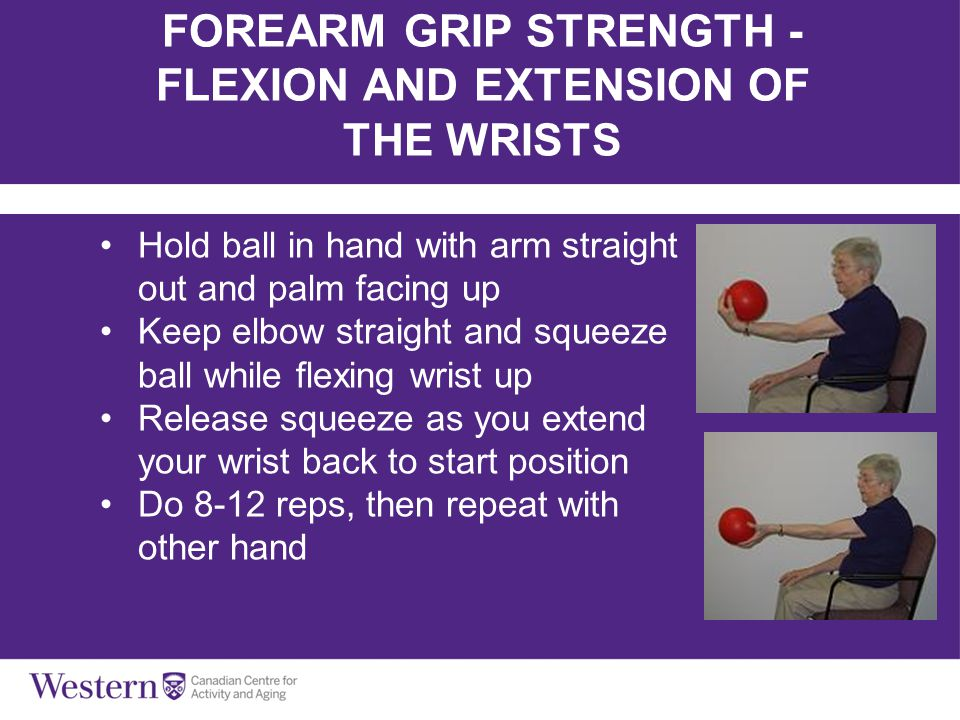 FOREARM GRIP STRENGTH - FLEXION AND EXTENSION OF THE WRISTS
