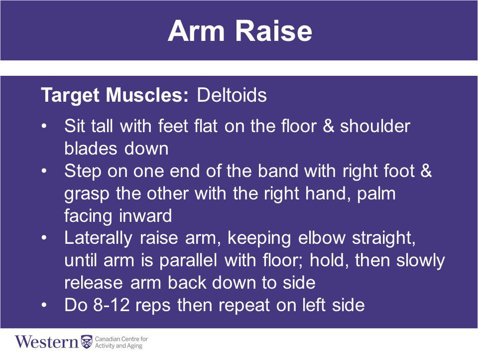 Arm Raise Target Muscles: Deltoids