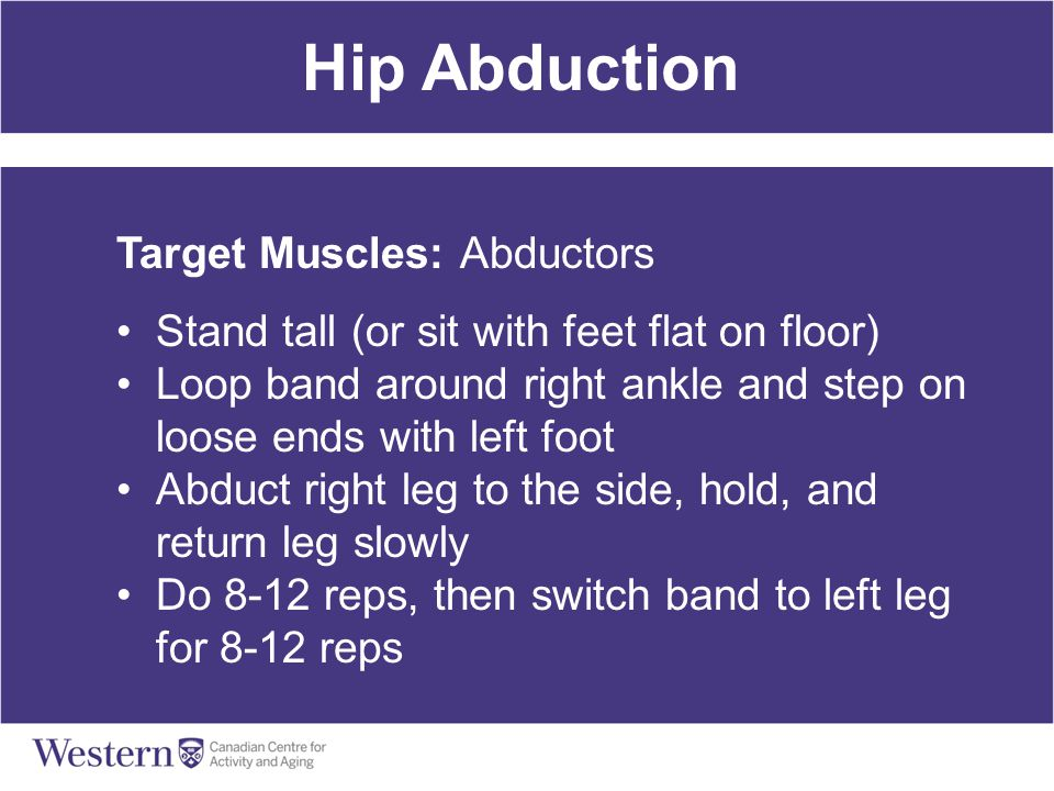 Hip Abduction Target Muscles: Abductors