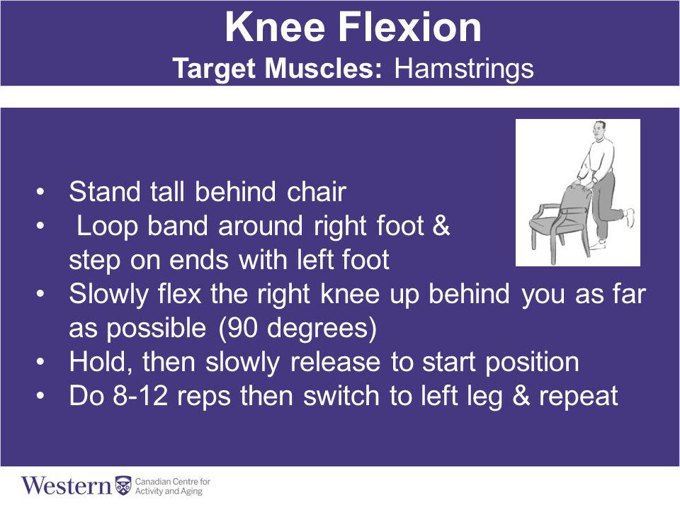 Target Muscles: Hamstrings