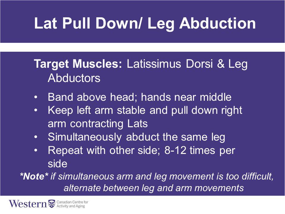 Lat Pull Down/ Leg Abduction