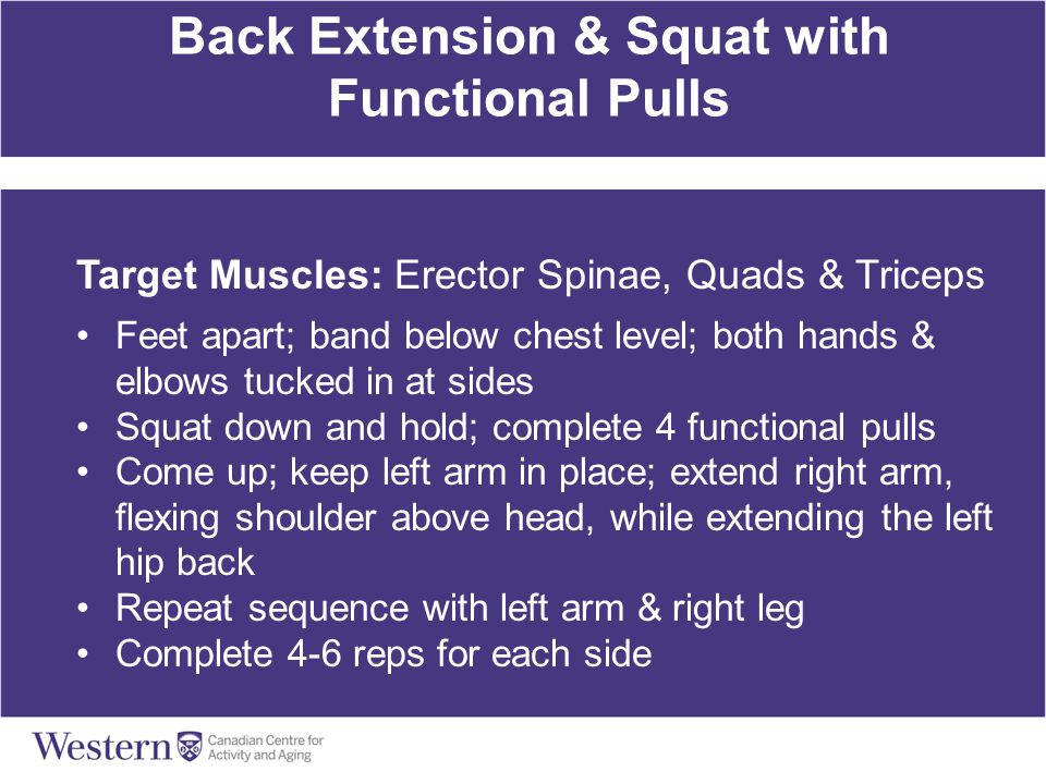 Back Extension & Squat with Functional Pulls