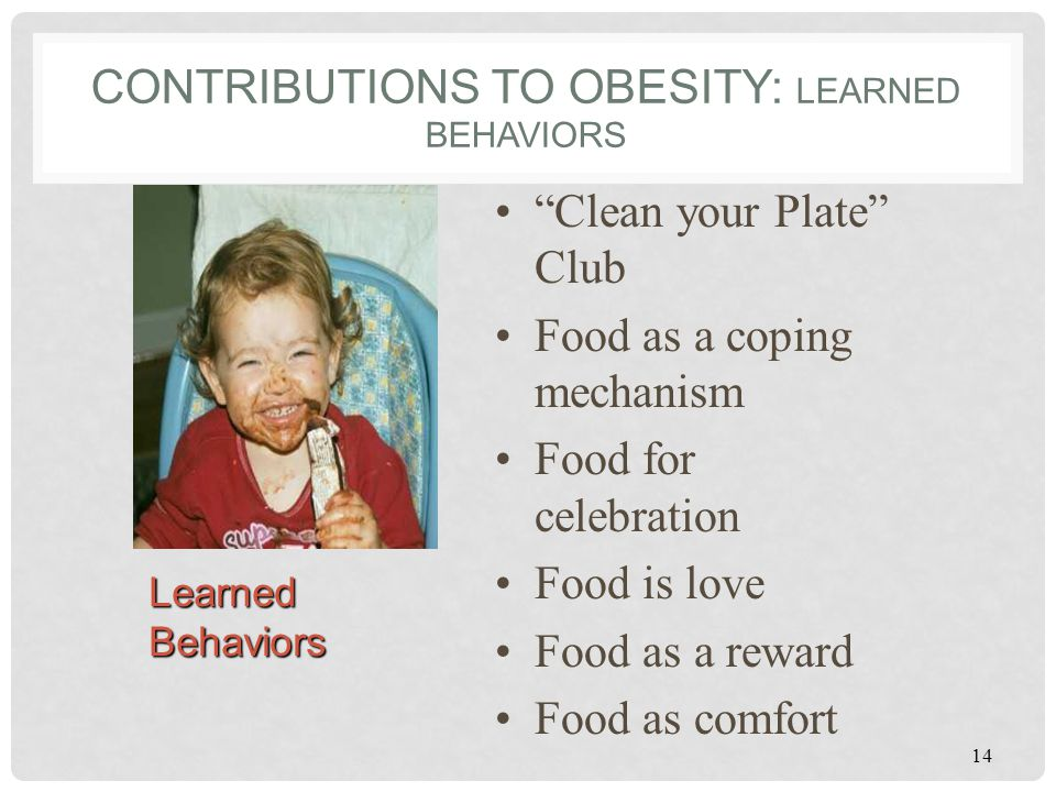 Contributions to Obesity: Learned Behaviors