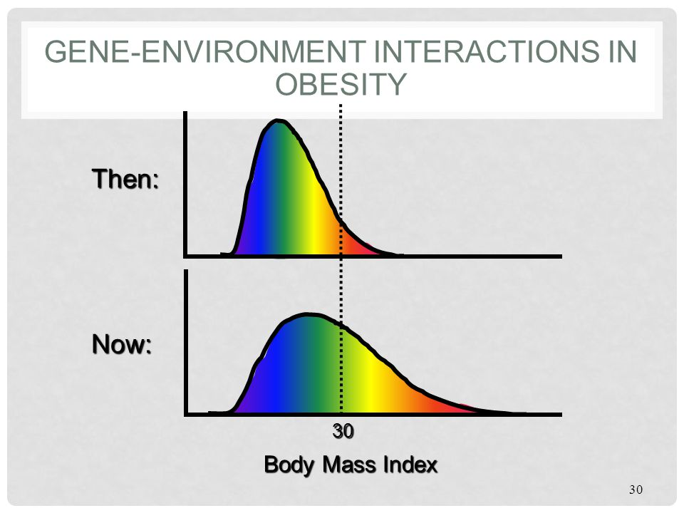 Gene-Environment Interactions in Obesity