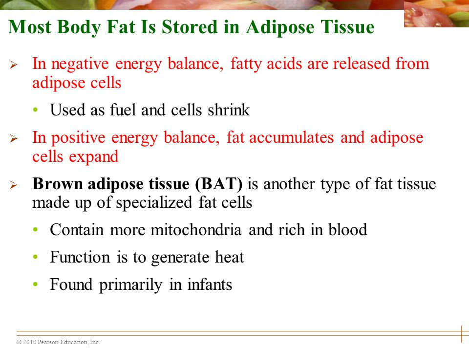Energy Balance and Body Composition - ppt video online download