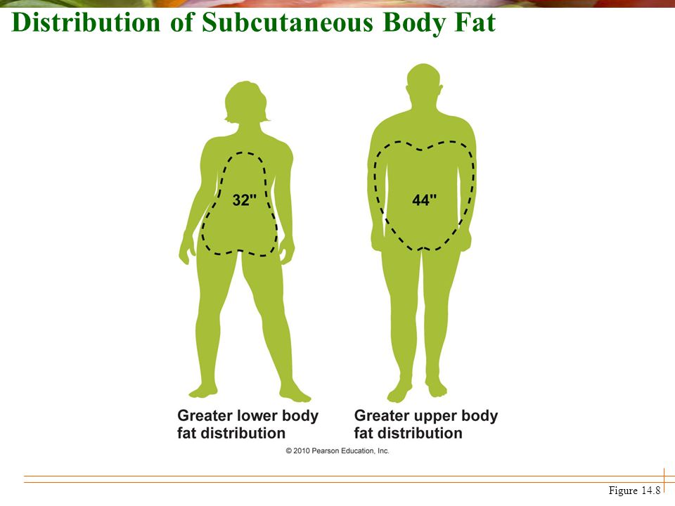 Distribution of Subcutaneous Body Fat