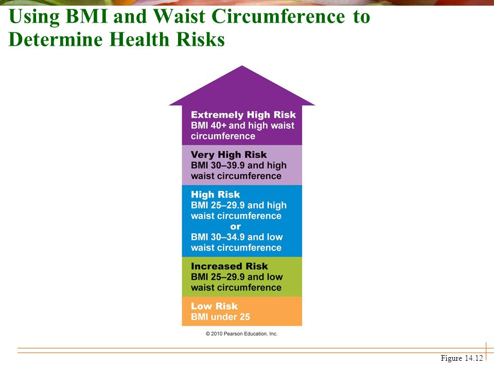 Using BMI and Waist Circumference to Determine Health Risks