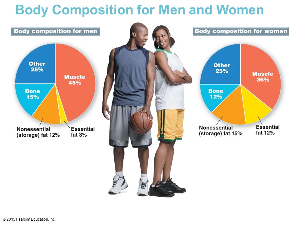 Body Composition for Men and Women
