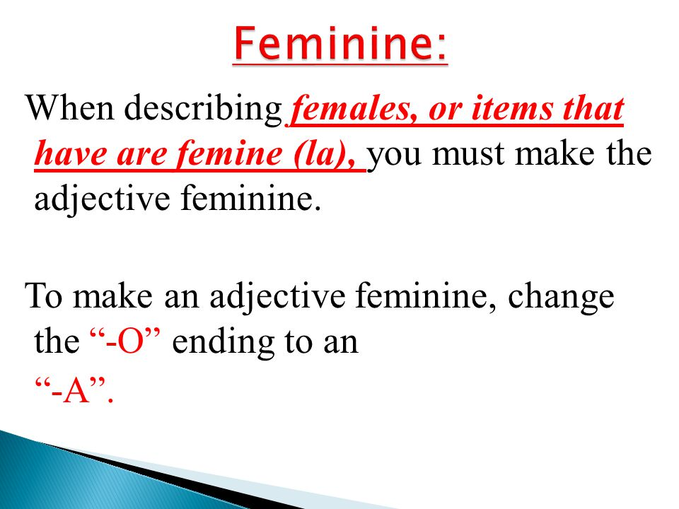 Feminine: When describing females, or items that have are femine (la), you must make the adjective feminine.