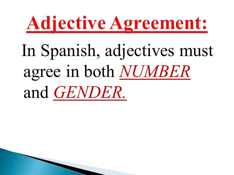 Adjective Agreement: In Spanish, adjectives must agree in both NUMBER and GENDER.