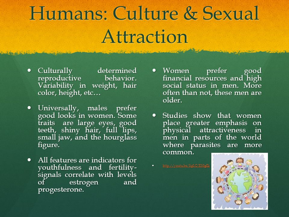Humans: Culture & Sexual Attraction