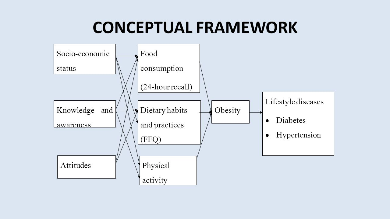 CONCEPTUAL FRAMEWORK Food consumption (24-hour recall)