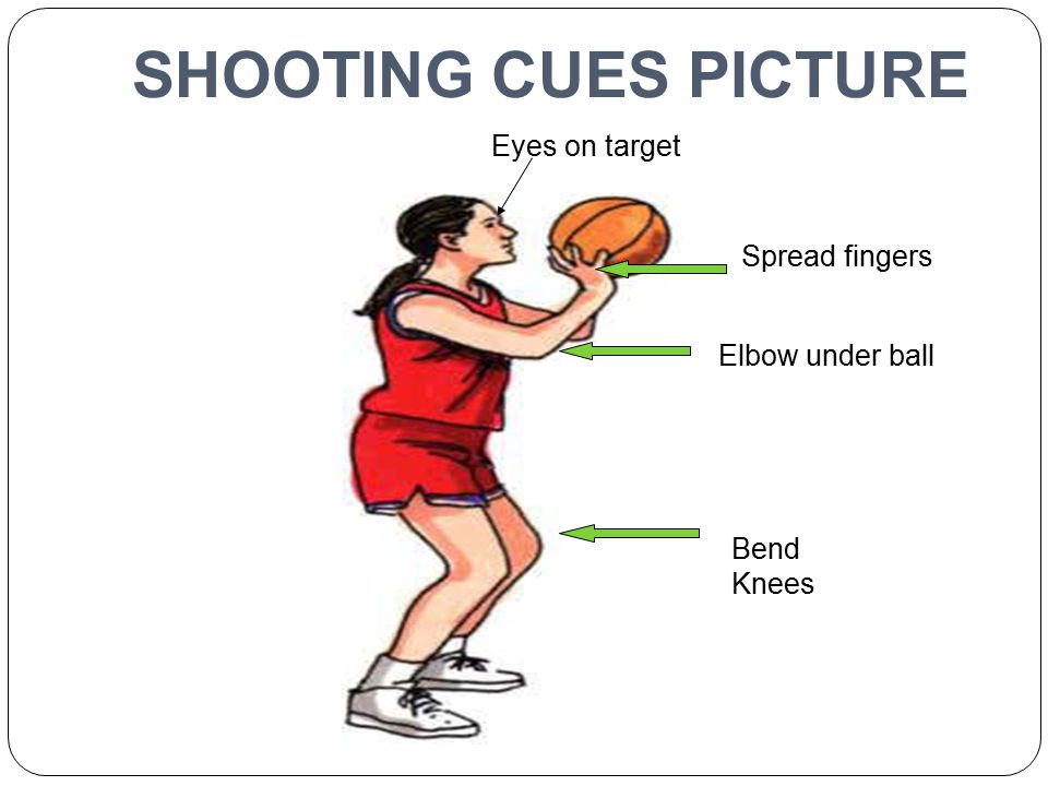 SHOOTING CUES PICTURE Eyes on target Bend Knees Spread fingers