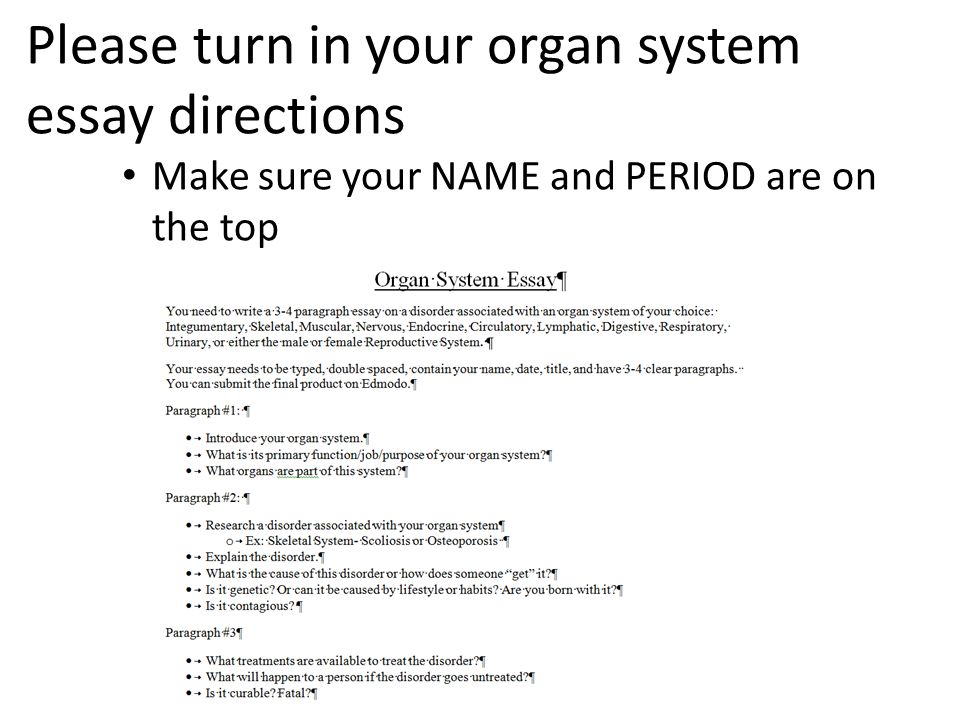 Please turn in your organ system essay directions