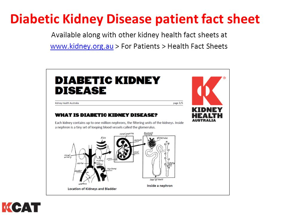 Diabetic Kidney Disease patient fact sheet
