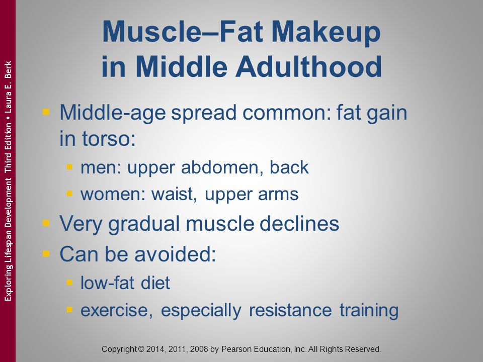 Muscle–Fat Makeup in Middle Adulthood