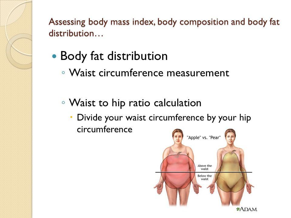 Assessing body mass index, body composition and body fat distribution…