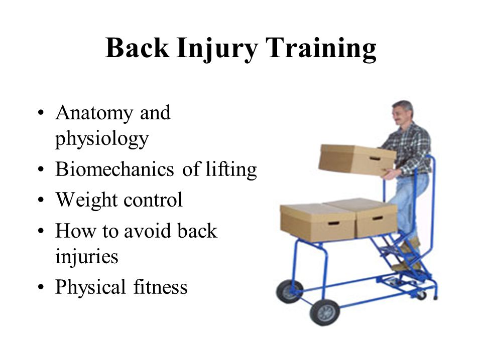 Back Injury Training Anatomy and physiology Biomechanics of lifting