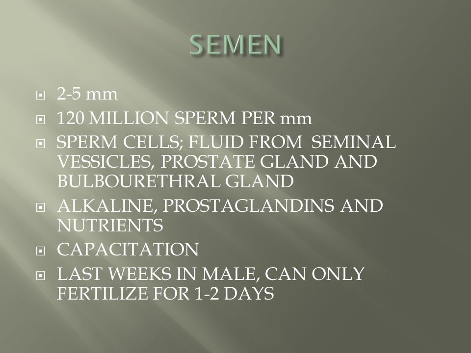 SEMEN 2-5 mm 120 MILLION SPERM PER mm