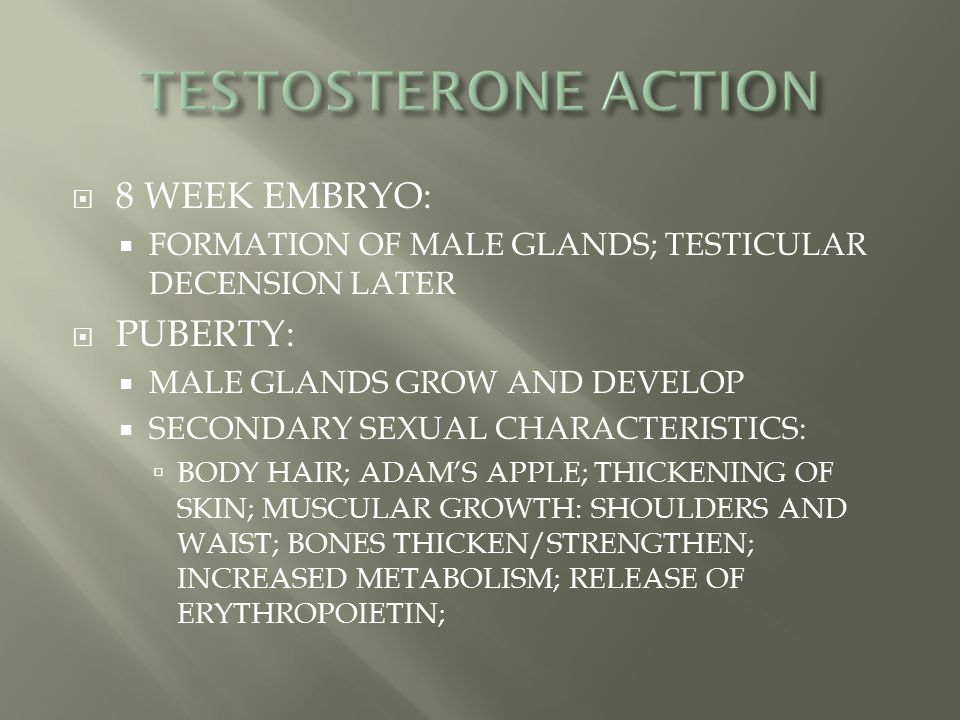 TESTOSTERONE ACTION 8 WEEK EMBRYO: PUBERTY: