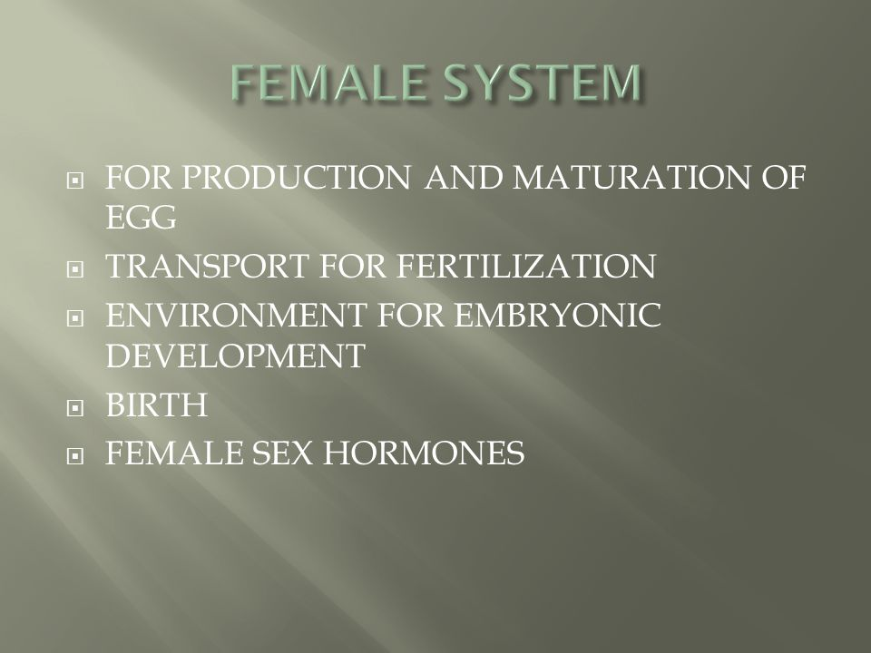 FEMALE SYSTEM FOR PRODUCTION AND MATURATION OF EGG