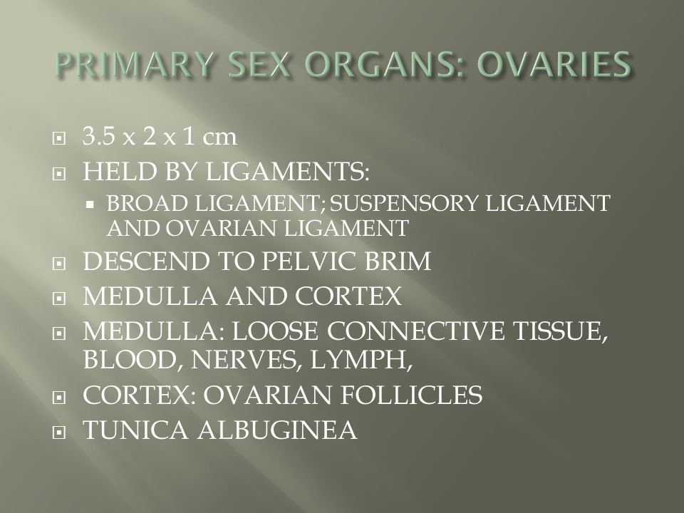 PRIMARY SEX ORGANS: OVARIES