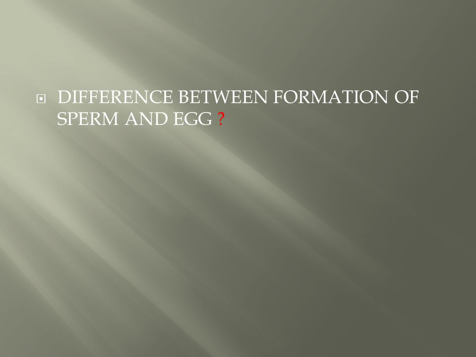 DIFFERENCE BETWEEN FORMATION OF SPERM AND EGG
