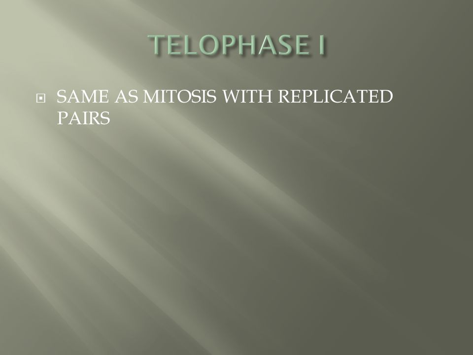 TELOPHASE I SAME AS MITOSIS WITH REPLICATED PAIRS
