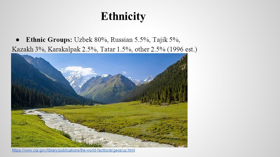 Ethnicity Ethnic Groups: Uzbek 80%, Russian 5.5%, Tajik 5%,
