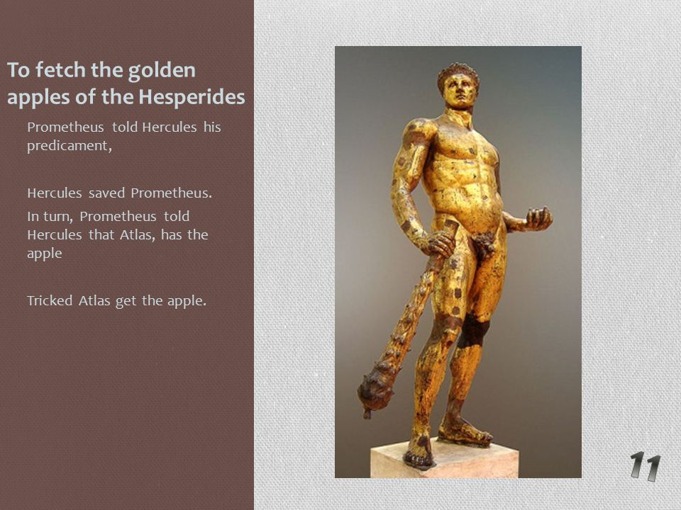 To fetch the golden apples of the Hesperides