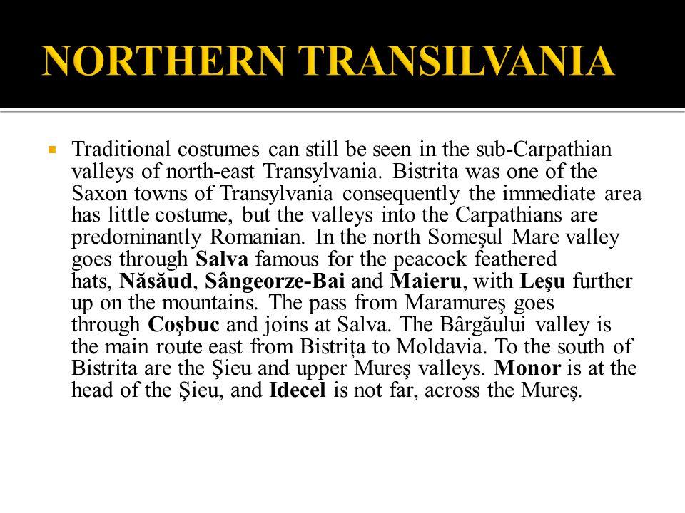NORTHERN TRANSILVANIA