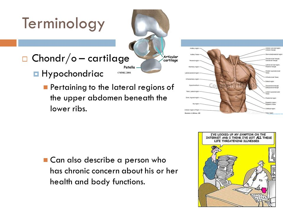 Terminology Chondr/o – cartilage Hypochondriac