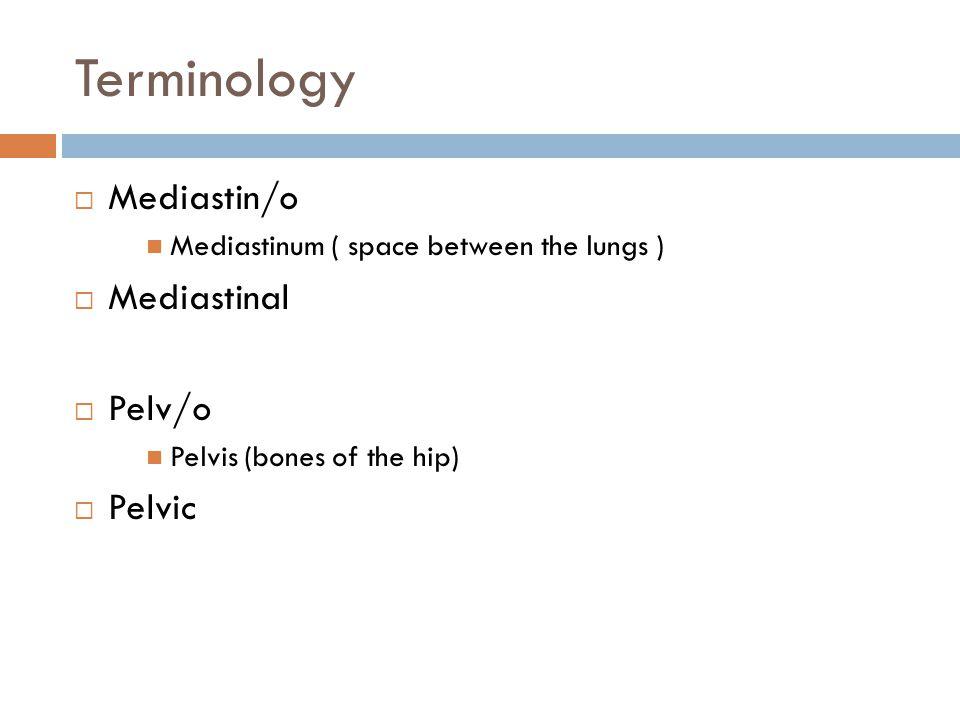 Terminology Mediastin/o Mediastinal Pelv/o Pelvic